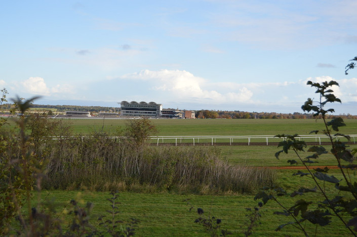 View of Newmarket's Rowley Mile Course