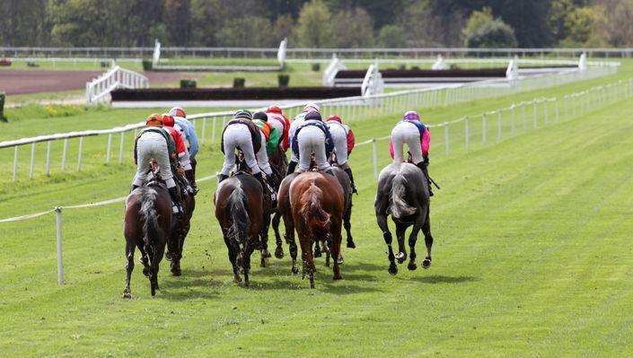 Horse Racing Grades Explained - UK Betting Sites