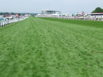 Epsom Racecourse Straight on Derby Day