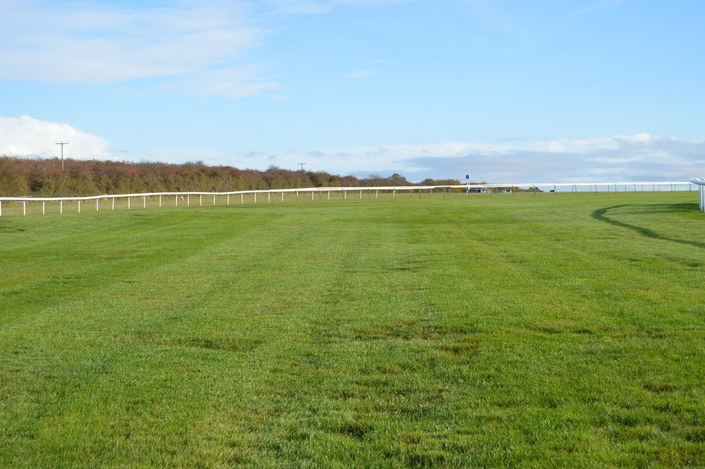 Cesarewitch Course at Newmarket