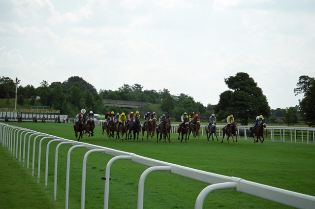 A Race Taking Place at York